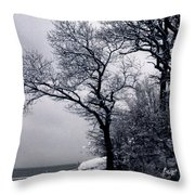 Bay Side Throw Pillow