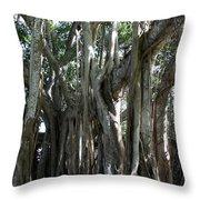 Bayan Tree Throw Pillow