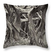 Baynan Roots Throw Pillow
