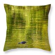 Bayou Dream Throw Pillow