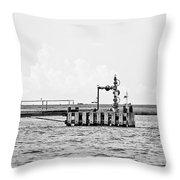 Bayou Energy - Bw Throw Pillow