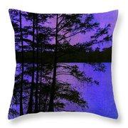 Bayou In Moonlight Throw Pillow