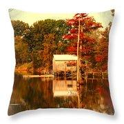 Bayou Scenery Throw Pillow