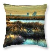 Bayou Sunrise Throw Pillow