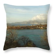 Bbc Beach Throw Pillow