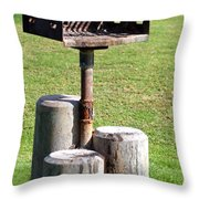 Bbq In Park Throw Pillow