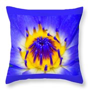 Blue Brilliance Number Two Throw Pillow