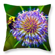 Be My Honey - Paint Throw Pillow