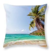 Beach And Palm Tree Throw Pillow