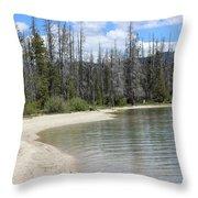 Beach At Redfish Lake Throw Pillow