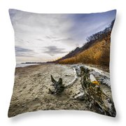 Beach At Scarborough Bluffs Throw Pillow by Elena Elisseeva