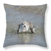 Beach Bird Bath 2 Throw Pillow