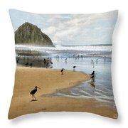 Beach Birds Impasto Throw Pillow