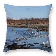 Beach Birds Throw Pillow