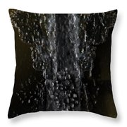 Beach Botanical Throw Pillow