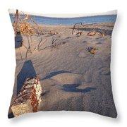 Beach Brick Throw Pillow