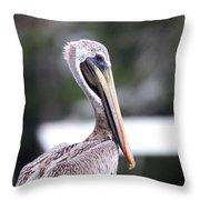 Beach Bum - Pelican Throw Pillow