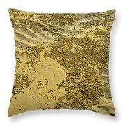 Beach Desertscape Throw Pillow