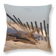 Beach Fencing Throw Pillow