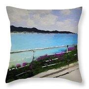 Beach Front View Throw Pillow