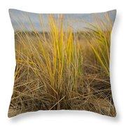 Beach Grass Throw Pillow