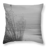 Beach Grass In The Snow Throw Pillow