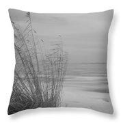 Beach Grass In The Snow Throw Pillow