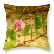 Beach Morning Glory Throw Pillow