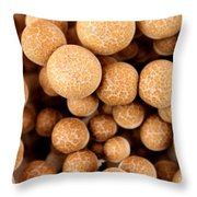 Beach Mushrooms Throw Pillow