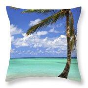 Beach Of A Tropical Island Throw Pillow