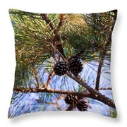 Beach Pine Throw Pillow