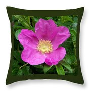 Pink Beach Rose Fully In Bloom Throw Pillow