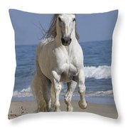 Beach Run Throw Pillow