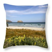 Beach Scene Otago Peninsula South Island New Zealand Throw Pillow