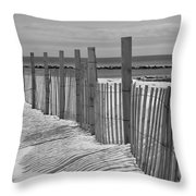 Beach Snow  Throw Pillow by Catherine Reusch Daley