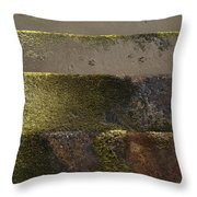 Beach Steps 1 Throw Pillow