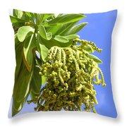 Beach Tree Seed Pods Throw Pillow