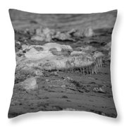 Beach With Ice Formations Throw Pillow