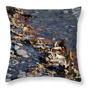Beach With Stones Throw Pillow