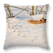 Beach Wood And Curly-q Throw Pillow
