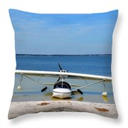 Beached Throw Pillow