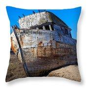Beached Point Reyes Throw Pillow