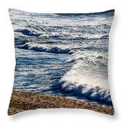 Beaches And Birds Throw Pillow
