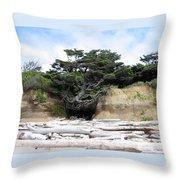 Beachtree Throw Pillow