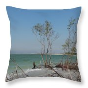 Fort De Soto Beachview Throw Pillow