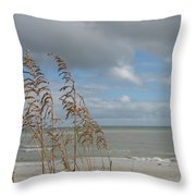 Beachview With Seaoat  Throw Pillow