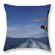 Beagle Channel Throw Pillow