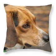 Beagle Loyalty Throw Pillow