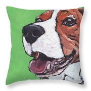 Beagle Timo Throw Pillow