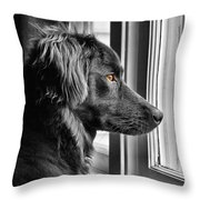 Bear At Window Throw Pillow